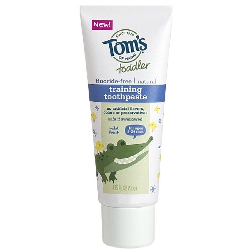 Tom's of Maine Toddler Fluoride-free Natural Training Toothpaste Mild Fruit